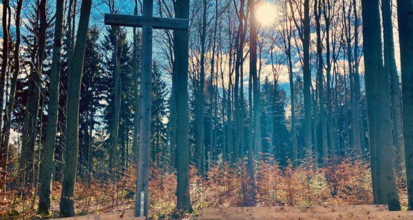 Beisetzung Im Wald - Andachtsplatz Im Waldfriedhof Zwickauer Land, Mülsen